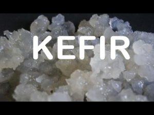 Propriedades Curativas do Kefir.