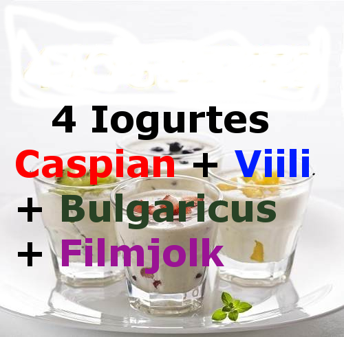4-iogurtes-caspian-viili-bulgaricus-filmjolk